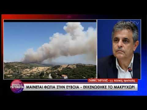 Ο γ.γ. Πολιτικής Προστασίας για τη φωτιά στην Ευβοια | 04/07/2019 | ΕΡΤ