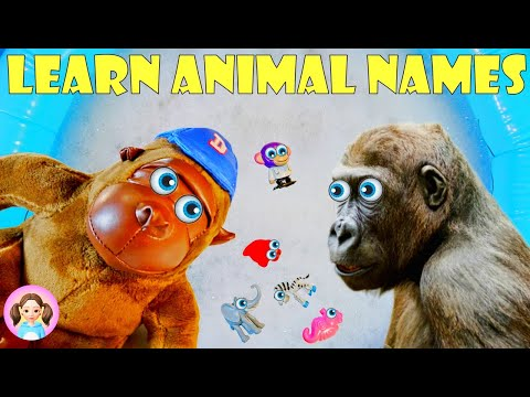 Learn The Names Of Animals From Miss Mia - Africa, The North, The Farm   MissMiaAnimals #3