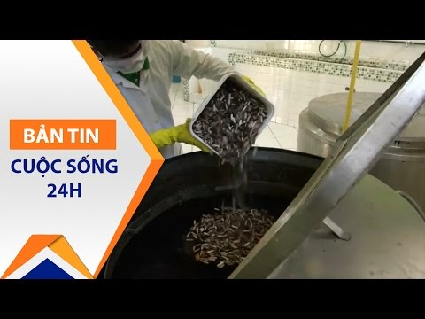 Biến đầu lọc thuốc lá thành giấy viết tại Brazil | VTC - Thời lượng: 118 giây.
