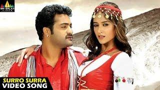 Download Lagu Shakti Songs   Surro Surra Video Song   Jr NTR, Ileana   Sri Balaji Video Mp3