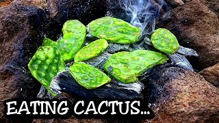 """How to gather, prepare and eat cactus THE RIGHT WAY!! - Cooking PRICKLY PEAR cactus MEXICAN style - Delicious """"SURVIVAL FOOD"""" that we eat on a regular basis - A DELICIOUS and NUTRITIOUS SUPERFOOD packed with vitamins and minerals!!!AMAZING and DELICIOUS food that you can find and cook easily if you find yourself in a survival situation!!!CHAIR AND COOK KIT COURTESY OF www.banggood.comGet the cook kit here:https://goo.gl/DEG0Imget the VEGETA seasoning here:http://amzn.to/2rSkDnLget the pocket knife here: http://amzn.to/2rCmiyeget the knife here:http://amzn.to/2sjLQwaget the chair here:https://goo.gl/jq1gLvget the orange coffee mug here:http://amzn.to/2qyHHUzget ready to eat cactus here: http://amzn.to/2rSl4OQIf you would like to help and support my channel, check out my PATREON account: http://patreon.com.pisuarez"""