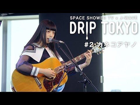 , title : 'DRIP TOKYO #2 カネコアヤノ'