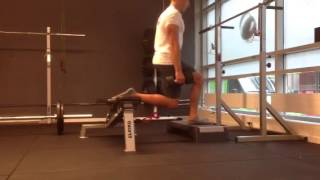 Exercise Index: Bulgarian splitsquat with resistance in opposite hand