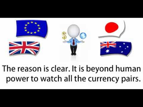 Forex Robots   Can Small Forex Investors Utilize Automatic Forex Trading Robots Efficiently