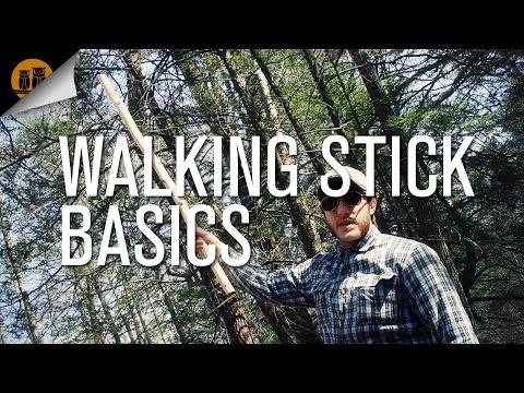 Walking Stick Basics
