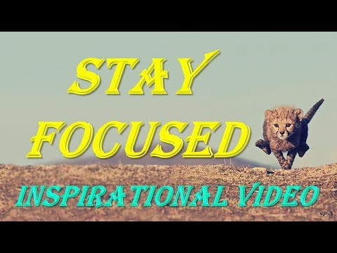 Quotes about happiness - STAY FOCUSED  Best Motivational Video  Inspirational Video