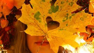 Fall. In Love