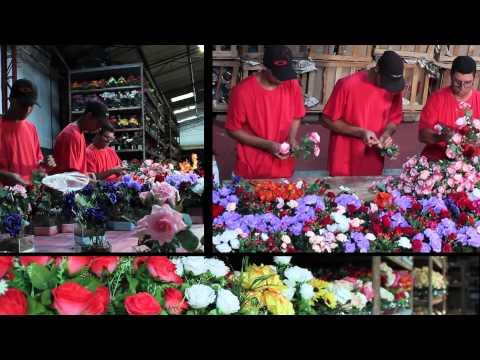 arranjos artificiais - Cliente e parceiro da F10 á Ricardo Arranjos atende lojistas de todo Brasil na área do varejo www.ricardoarranjos.wix.com/arte.