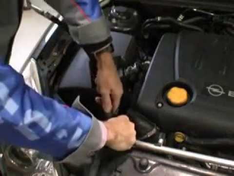 TranServe® (Оборудование для промывки и замены масла в АКПП)