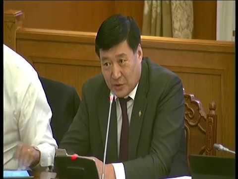С.Чинзориг: Монголын талд авчирсан гэдгээр халхавчилж, хууль зөрчихийг дэмжихгүй