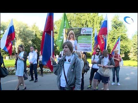 В Великом Новгороде состоялся митинг представителей партии «Яблоко»
