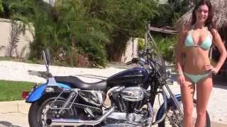 8. Used 2004 Harley Davidson Sportster 1200 Custom  for Sale Price Specs
