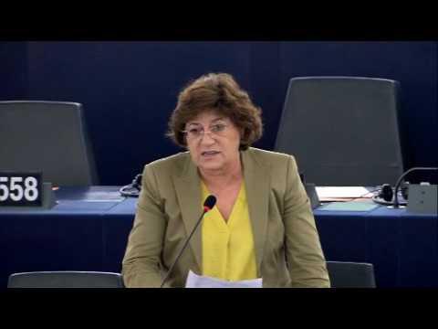 Ana Gomes debate sobre estratégia da UE para a Síria
