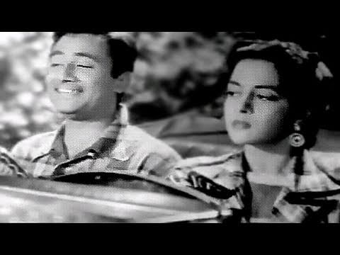 Video Jeevan Ke Safar Me Raahi - Kishore Kumar, Dev Anand, Nalini Jaywant, Munimji Song download in MP3, 3GP, MP4, WEBM, AVI, FLV January 2017