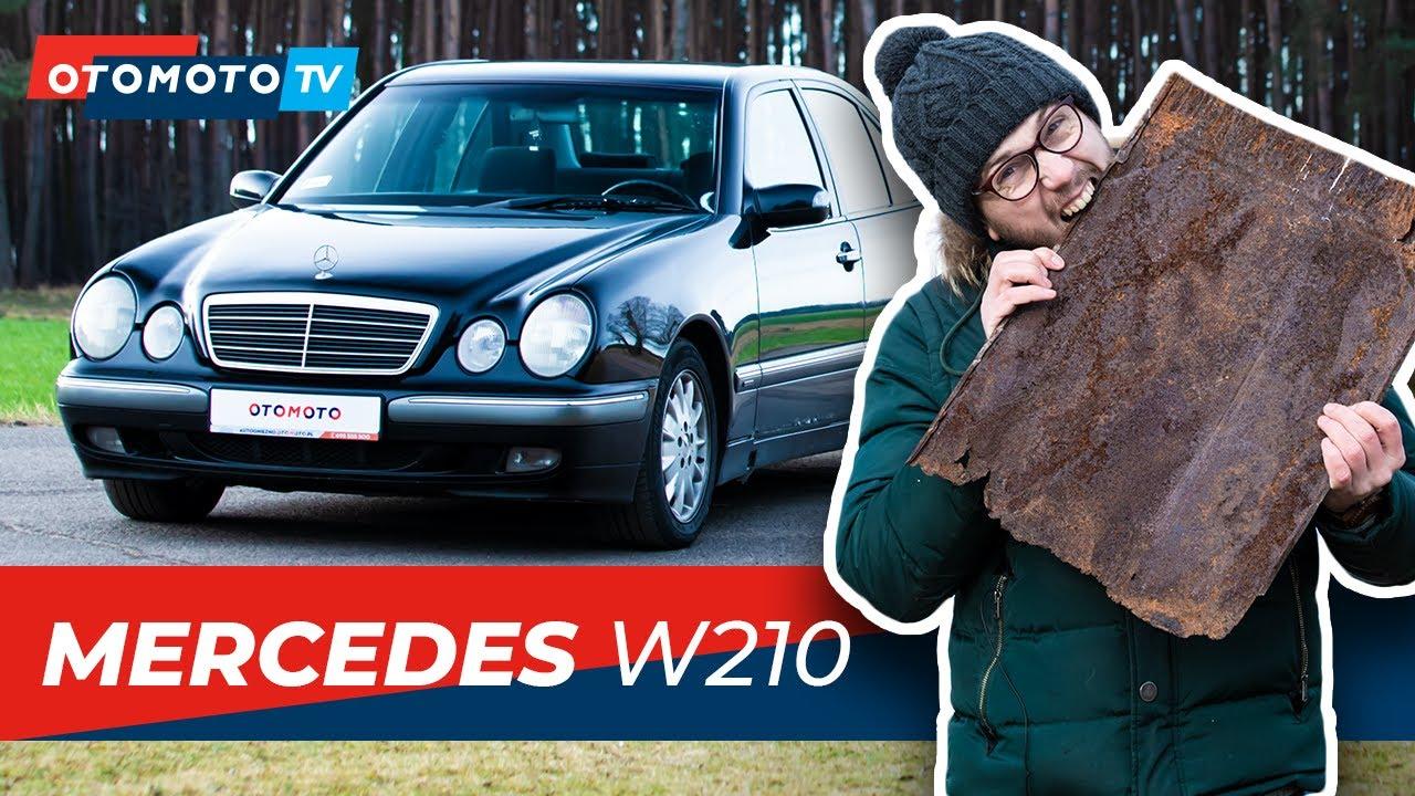 MERCEDES W210 - rdzawy okularnik