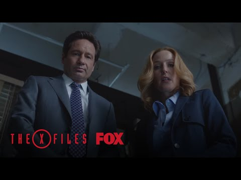 Scully And Mulder Arrive At The Crime Scene | Season 10 Ep. 4 | THE X-FILES