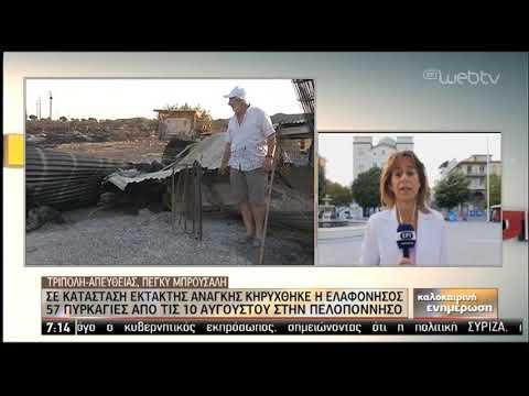 Σε κατάσταση έκτακτης ανάγκης κηρύχθηκε η Ελαφόνησος | 22/08/2019 | ΕΡΤ