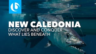 Poindimie New Caledonia  city photos gallery : Blue Lagoon: What Lies Beneath - New Caledonia GT Popping and Jigging