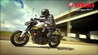10. The Tech Savvy 2017 Yamaha FZ-09 | Serial No. 000001