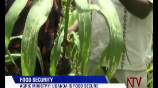 Agric. Ministry Says Uganda Is Food Secure