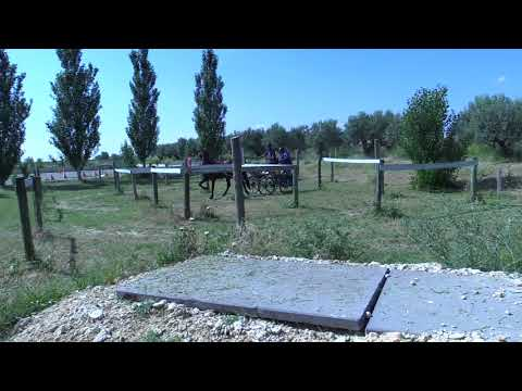 Campeonato Navarro de Enganches 240618 Video 3