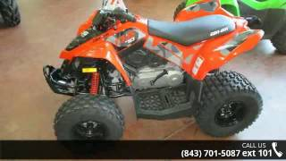 3. 2017 Can-Am DS 70  - Charleston Powersports - North Charl...