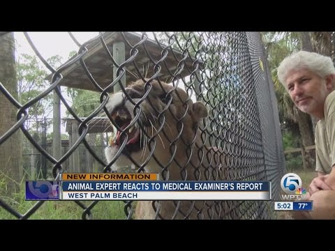 Animal expert reacts to medical examiner's report