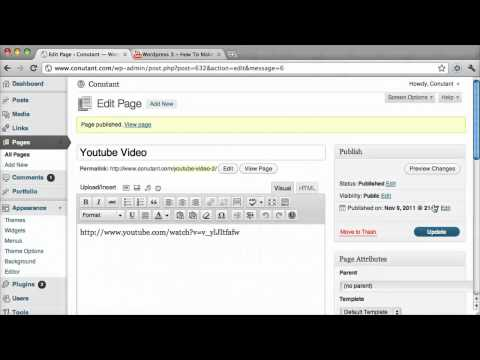 Embed Youtube Into WordPress