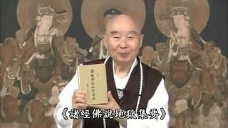 Kinh Vô Lượng Thọ Tinh Hoa 07-22 - Pháp Sư Tịnh Không