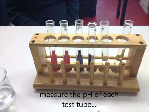 Effect of change in pH on the enzyme catalase