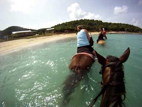 Horseback Ride in St. Martin