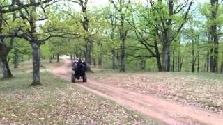 7. YAMAHA WOLVERINE 450  4X4 Wheelie  CARANSEBES