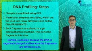 Essentials Concept Video - Fingerprinting & Profiling