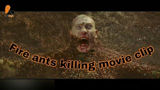 Fire ants killing clip for the scorpion king movie clip