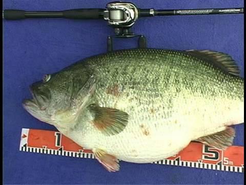 Manabu Kurita World Record Largemouth Bass