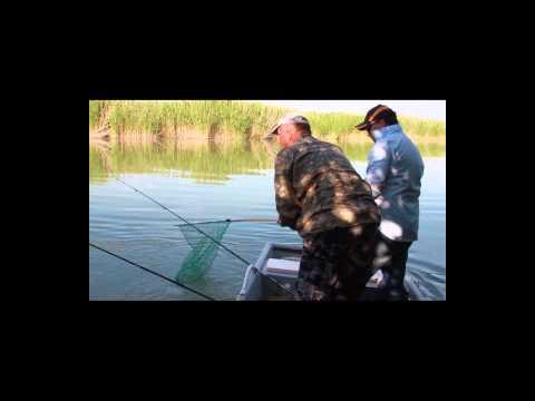 рыбалка на балхаше рыболовные базы