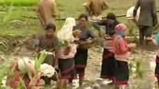 Lost Sounds - Newari Video Song (www.subhaprabhat.com)
