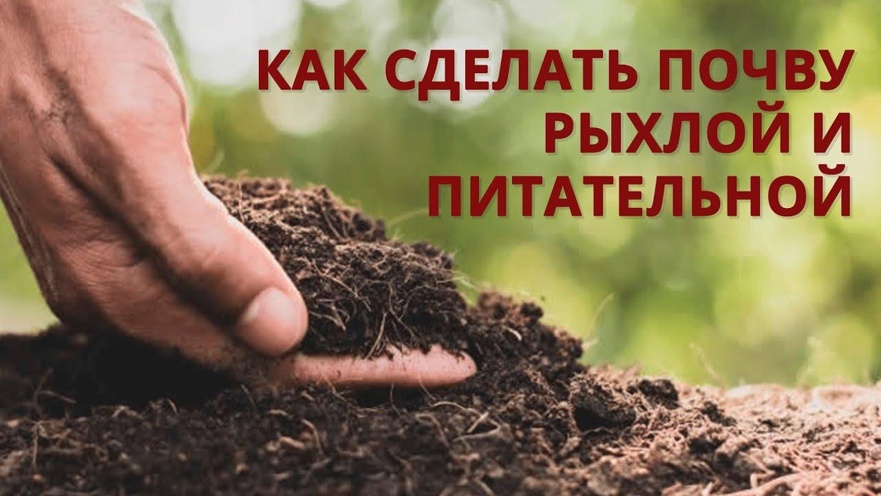 Каким способом увеличить плодородие грунта, чтобы земля получилась обильнее чем чернозём?
