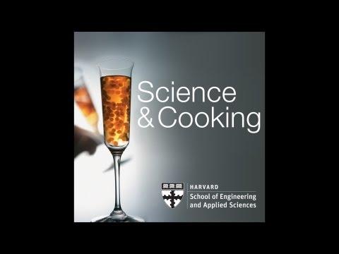 Food and Science - Harvard University