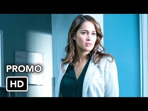 Rosewood 2.13 (Preview)
