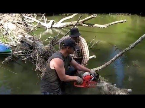 рыбалка на колокше видео