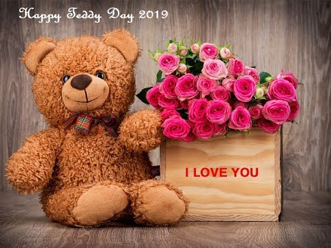 Cute quotes - Teddy Day Images: Cute Teddy Bear Photos 2019 With Love Quotes हैप्पी टेडी डे