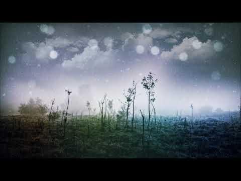 Kyle Dixon & Michael Stein - Stranger Things (Parallel Universe Bootleg)