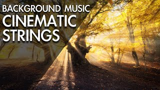 Video Amazing & Beautiful Cinematic Background Music For Videos MP3, 3GP, MP4, WEBM, AVI, FLV Oktober 2018