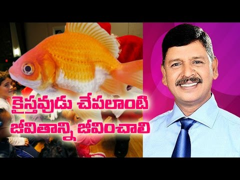 Jesus Telugu Prayer Messages – Live Like A Fish – Bro Bala Swamy – Nature is God