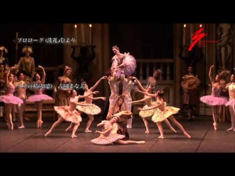 Asami Maki Ballet Tokyo The Sleeping Beauty P.V