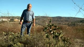 A brief introduction to UC Irvine's Ecological Preserve