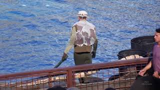 Video An incredible incident happened! WaterWorld stunt show at Universal Studios Hollywood MP3, 3GP, MP4, WEBM, AVI, FLV Mei 2019