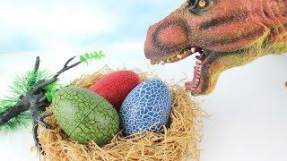 Video T Rex Try to Steal Dinosaur Eggs! 4D PUZZLE DINOSAUR SURPRISE TOYS! Dinosaur Toys for Kids. 공룡 알 부화 MP3, 3GP, MP4, WEBM, AVI, FLV Juli 2018