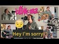 Hey I'm Sorry (blink-182 Acoustic Cover)
